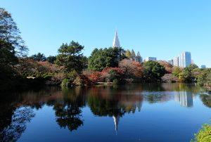 新宿御苑の画像